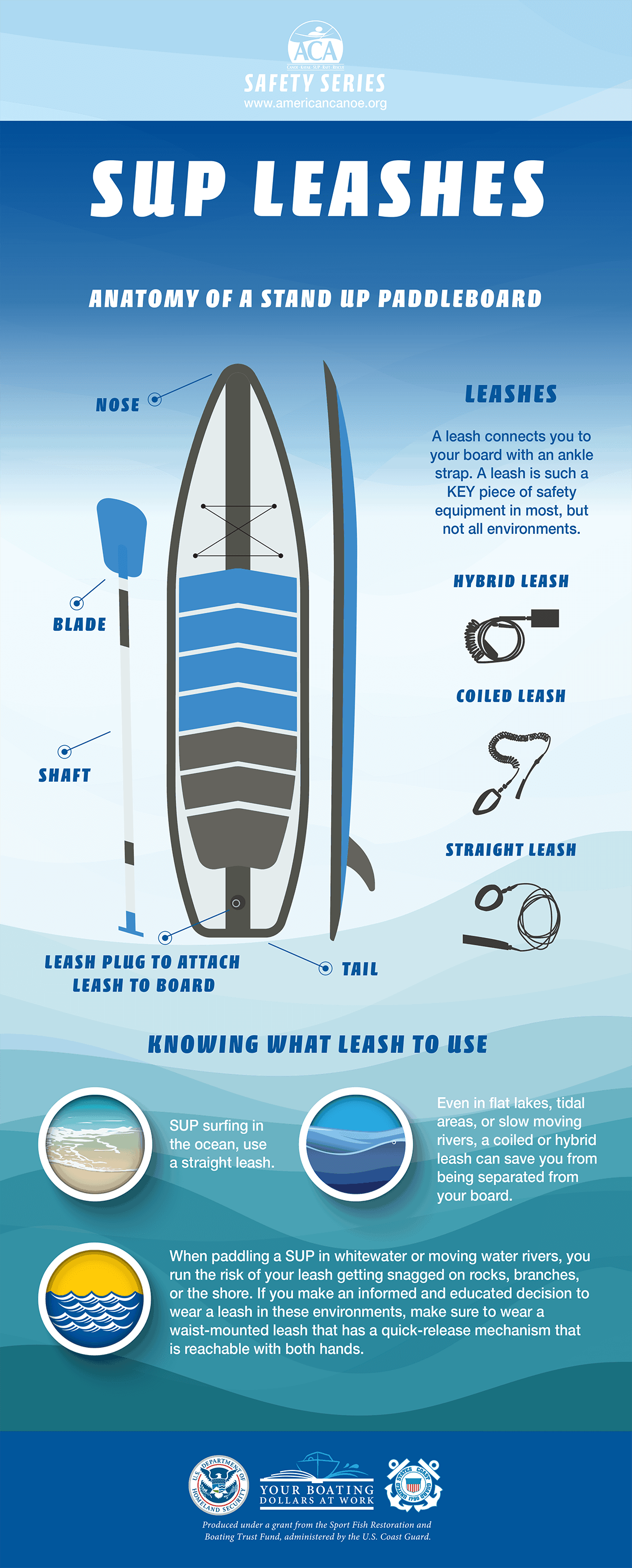 SUP Leashes Infographic